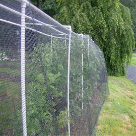 High Enacity Invisible Bird Netting , Wrap Knitted Tree