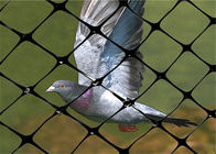 1m - 3m Width Bird Netting For Garden , Bird Netting For Blueberry Plants