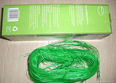 2m*10m Climbing Plant Support Net For Pea / Bean Packed In Plastic Bag